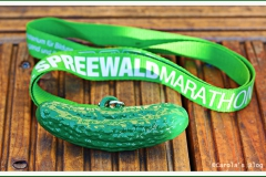 Medaille-Spreewald-2014