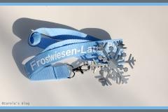 medaille-frostwiese