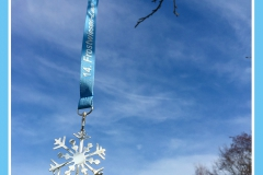 medaille-frostwiesenlauf-2016