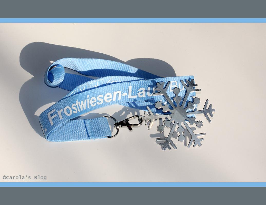 13. Frostwiesenlauf 2015
