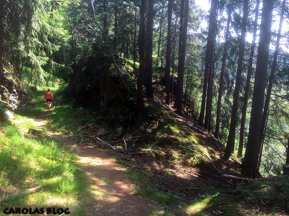 sachsentrail_trail2