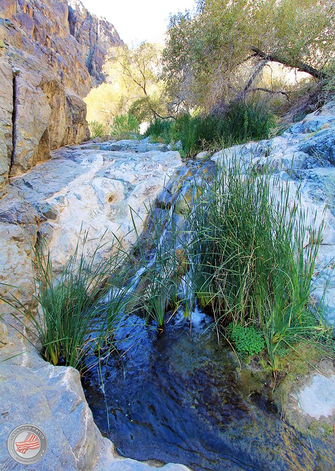 darwin falls waterfall