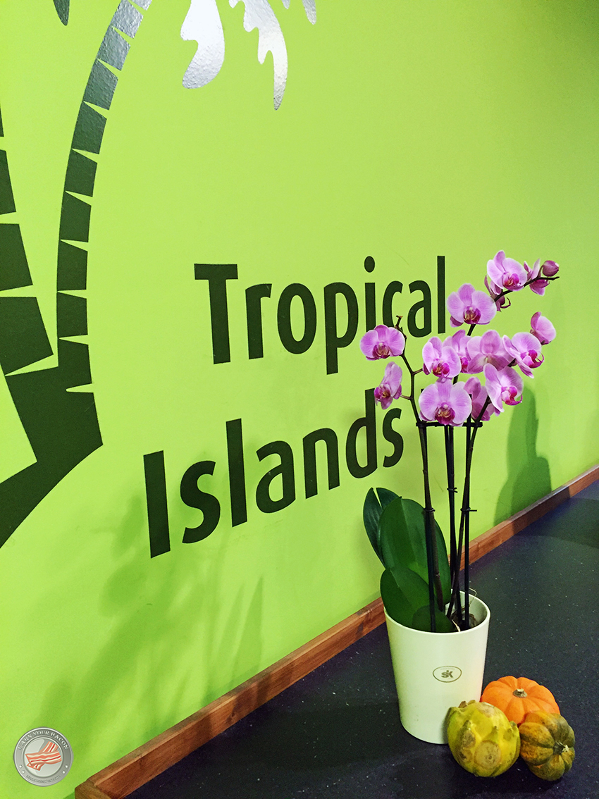 laufindietropen_tropical islands