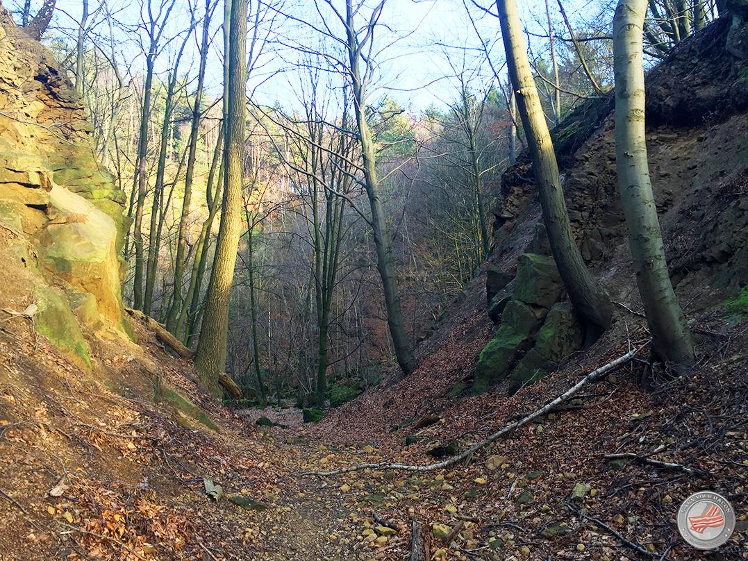 Teutoburger Wald2
