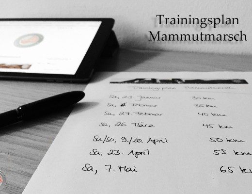 mammutmarsch-trainingsplan