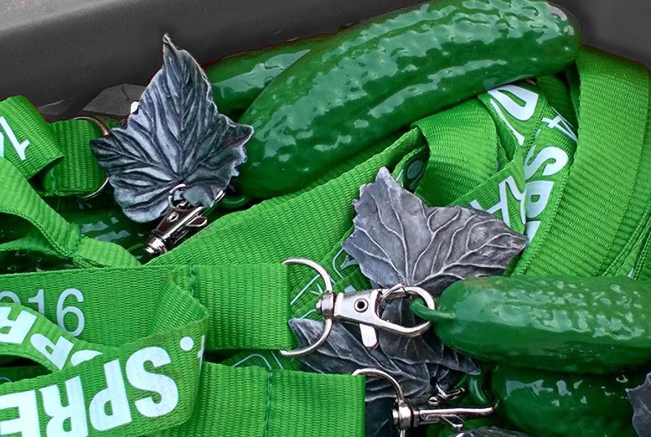 Spreewaldmarathon 2016 Medaille silberne Gurke