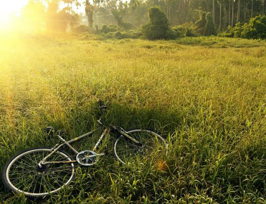 bicycle-241514_1280