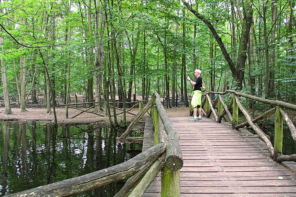 EYB-Wanderung Spandauer Forst Brücke