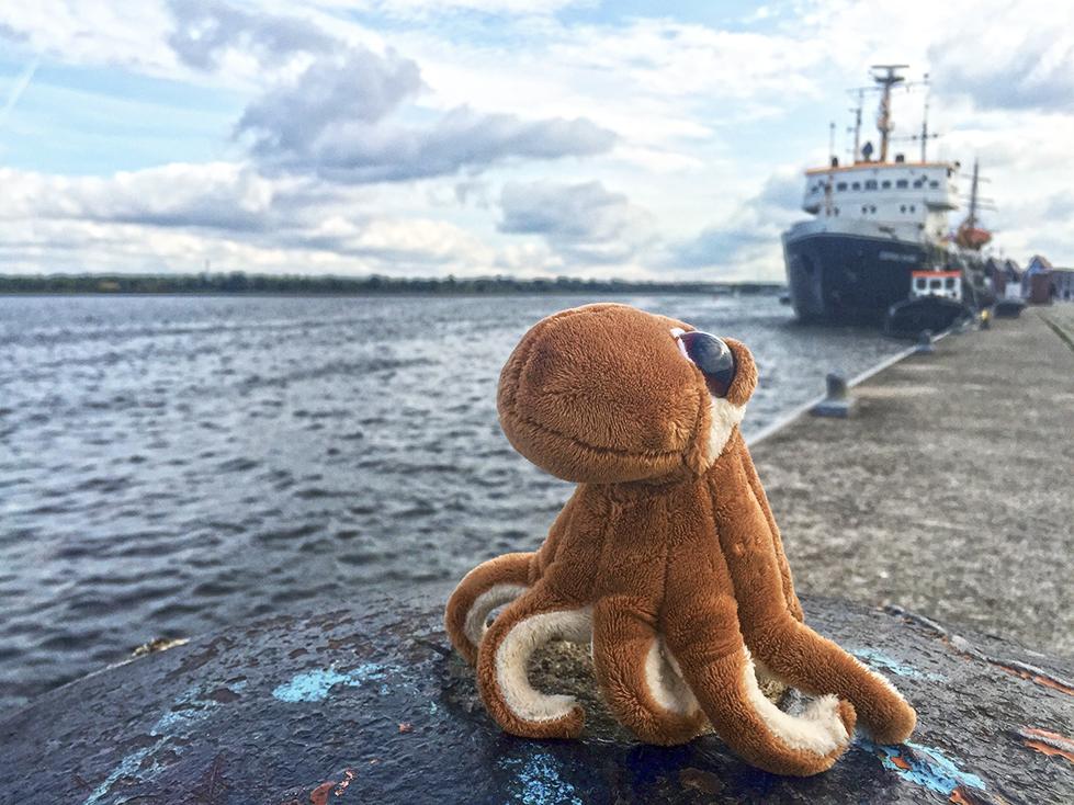 ostseeweg-2016-octopussy