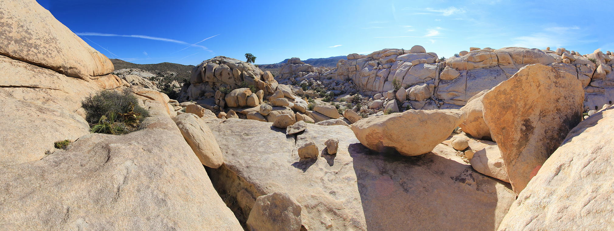 wonderland of rocks joshua tree